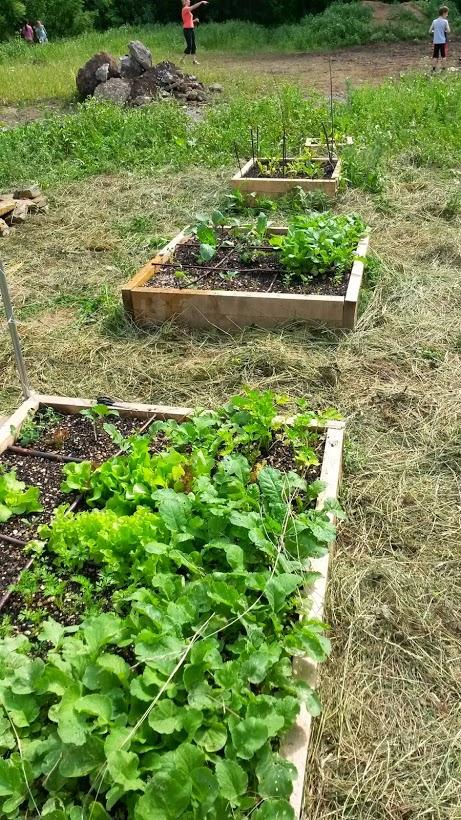 ctvereckove zahradky